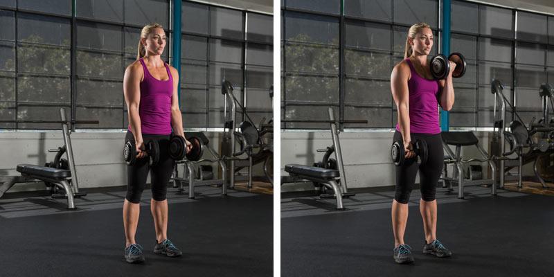 Biceps curls hareketinin yapılış şekli
